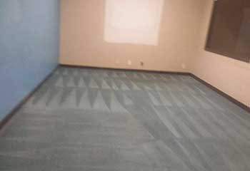 Carpet Cleaning Near Encino | Carpet Cleaning Company