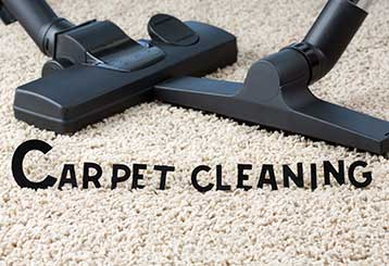 Large Residential Carpet Cleaning Company or a Small | Encino Carpet Cleaning