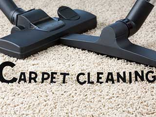 Large Residential Carpet Cleaning Company or a Small | Encino Carpet Cleaning Company